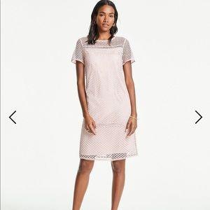 NWT: Ann Taylor Pink LACE T-SHIRT SHIFT DRESS